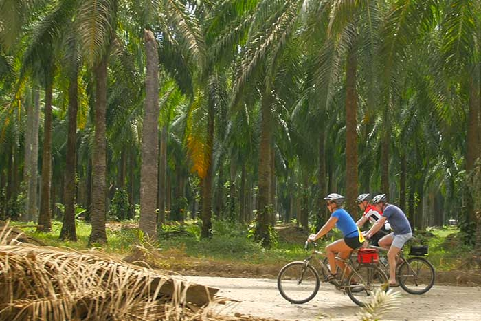 Sri Lanka Family Bike Tours