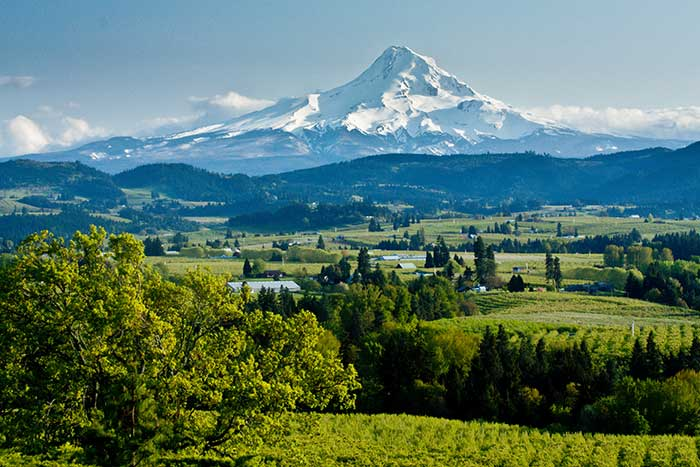 Columbia River Gorge & Mt. Hood Family Multi-Adventure Tour