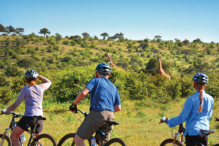South Africa & Botswana Family Safari Bike Tour