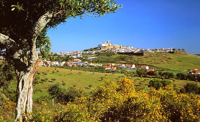 Northern Portugal & Douro Valley Bike Tour