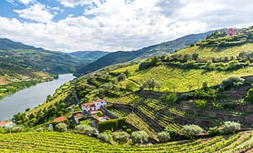 Douro Valley Family Bike Tour - Older Teens & 20s