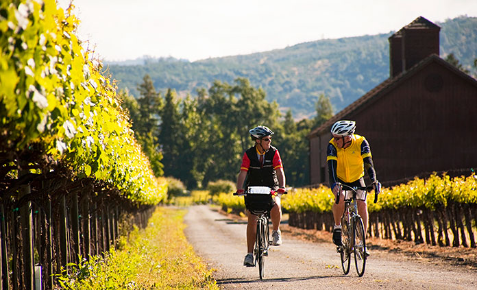 Image result for cyclist and wine