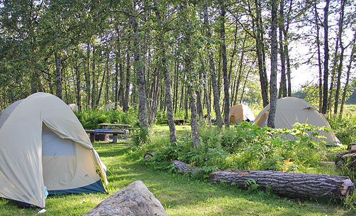Deluxe Camping Trips