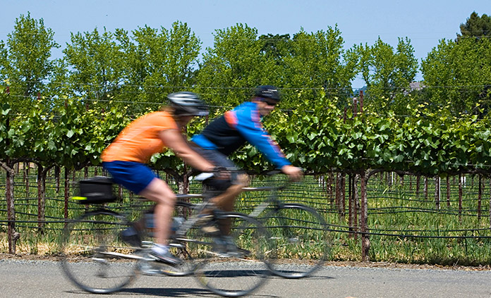 California Wine Country Bike Tour