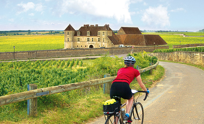 Chablis and Burgundy France Bike Tour