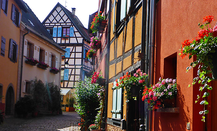 Champagne and Alsace Bike Tour