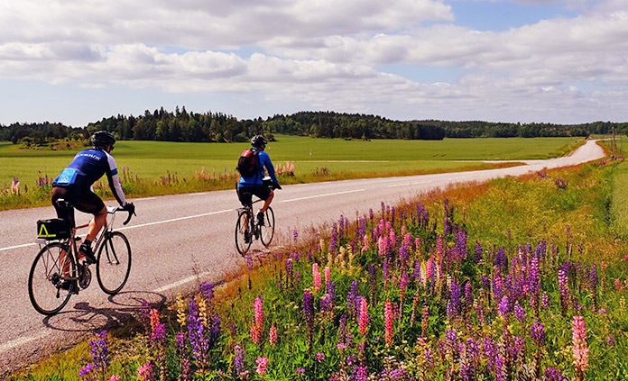 Sweden to Denmark Bike Tour
