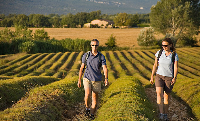 Provence walking and hiking tour