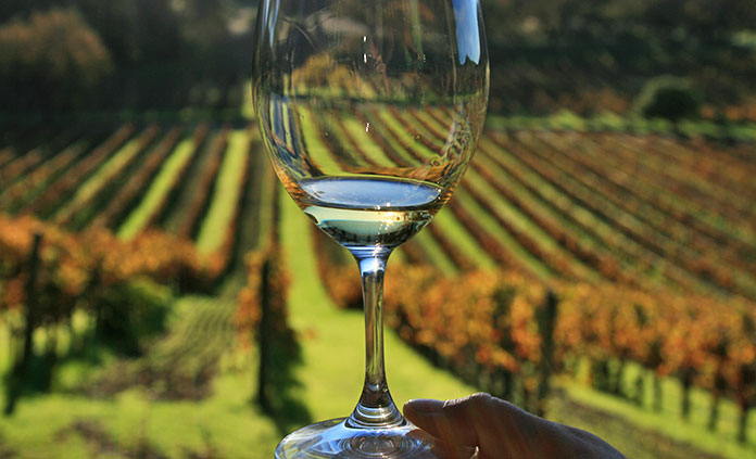 California Wine Country Active Culinary Walking Tour