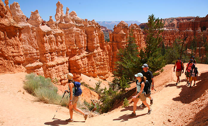 Zion and Bryce Family Camping Tours