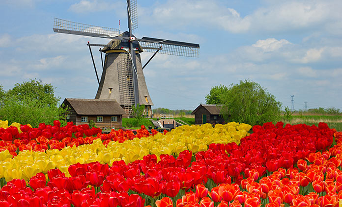 Holland and Belgium Adventure Tours