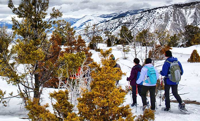 Yellowstone and Tetons Snow Adventure Tour
