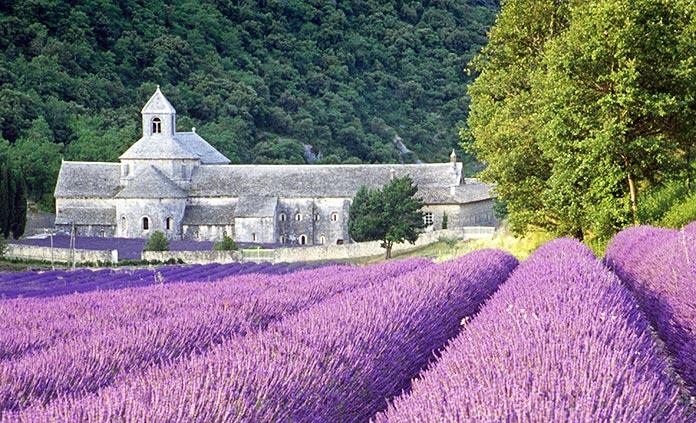 Provence Adventure Tours
