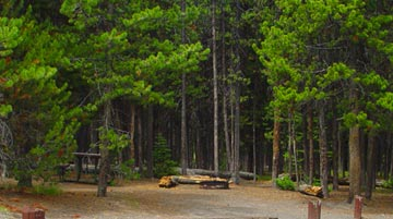 Grant Village Campground, Yellowstone National Park, Wyoming