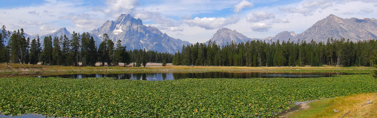 Grand Tetons - Yellowstone & Tetons Wildlife Safari Family Multisport Adventure Tour