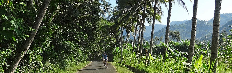 Bali Family Bike Tours