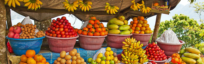 Fruits - Backroads Bali Family Bike Tours