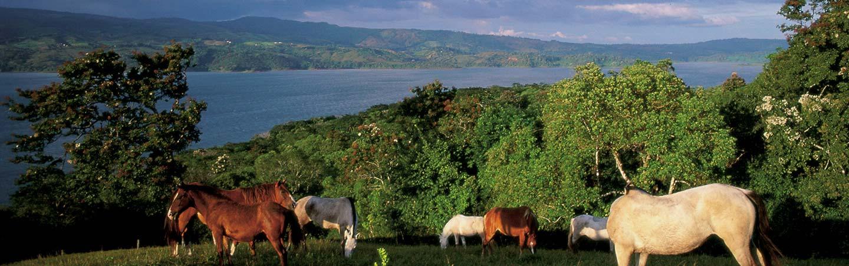 Costa Rica Bike Tours
