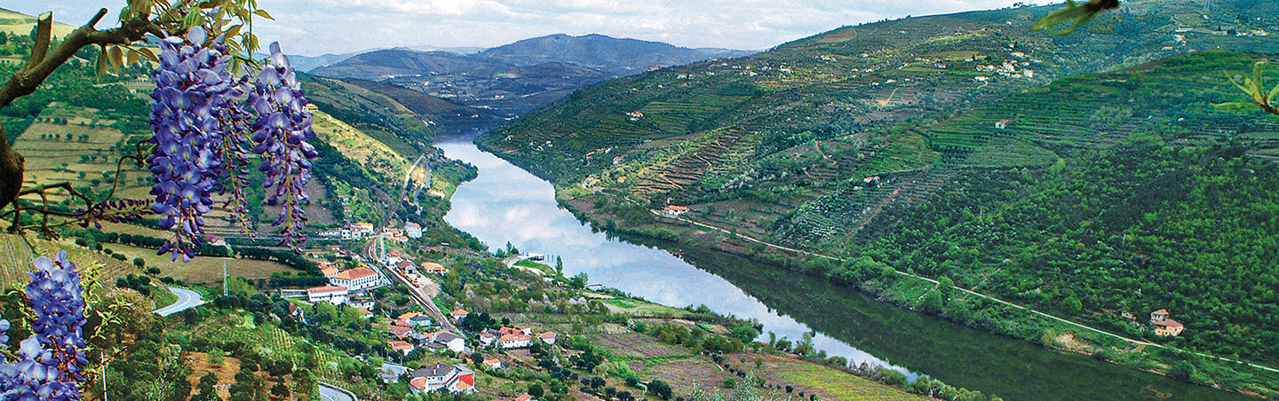 Portugal's Douro River Cruise Walking and Hiking Tours