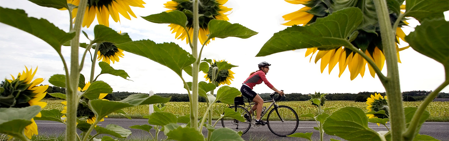 Biking on Backroads Loire Valley Bike Tours