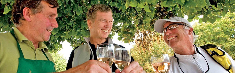 Wine tasting in Loire Valley, France