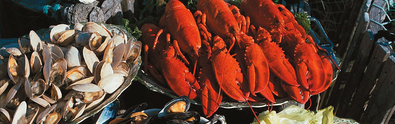 New England Seafood - Backroads Maine Bike Tour