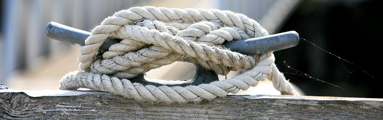 Knot, San Juan Islands, Washington