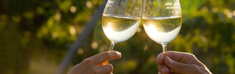 Wine Tasting on Backroads California Coast Bike Tour