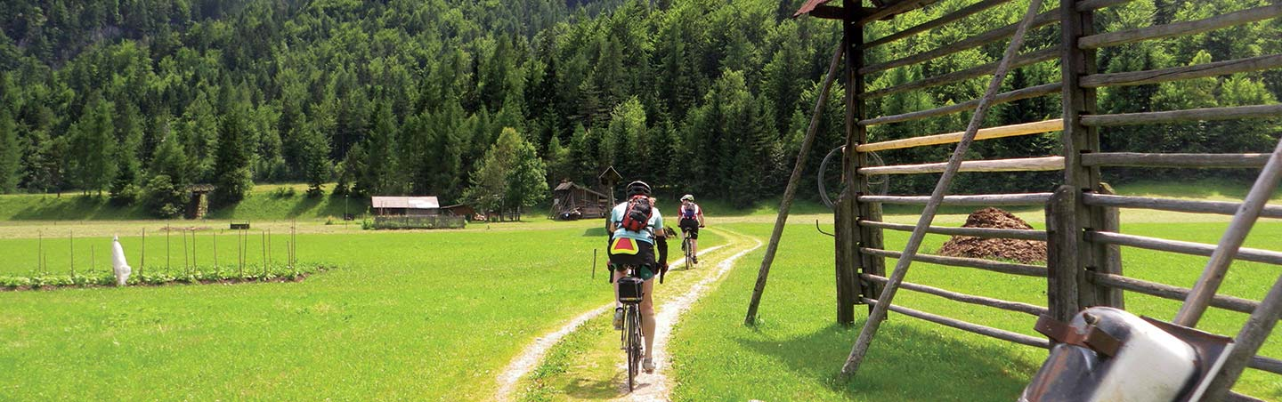 Slovenia & Italy Bike Tour