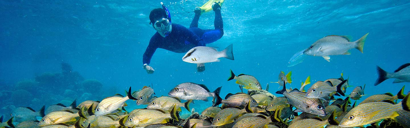 Snorkeling - Backroads Belize & Guatemala Family Multisport Tours