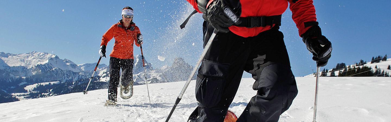 Snowshoeing - Canadian Rockies Snow Adventure Tour
