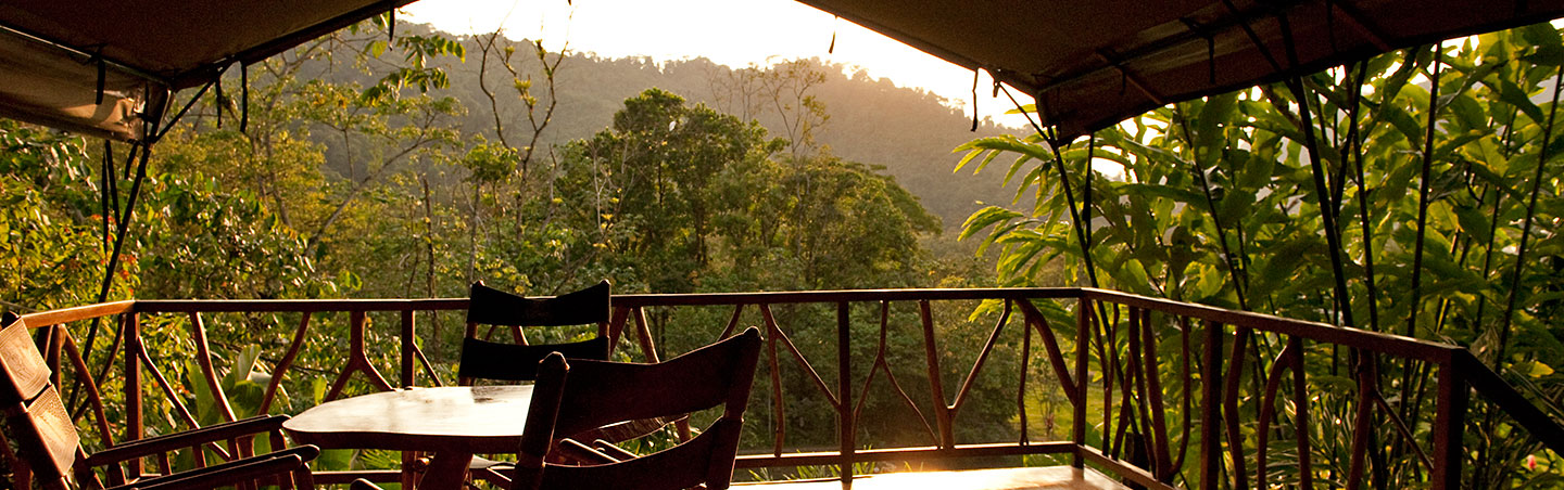 Rafiki Safari Lodge - Costa Rica