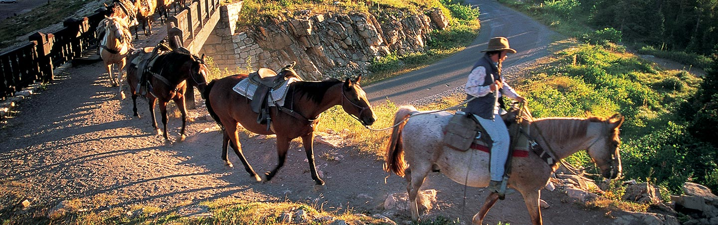 Horseback Riding - Glacier & Waterton Lakes National Parks
