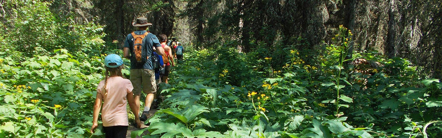 Hiking on Glacier & Waterton Lakes Family Multi-Adventure Camping Tour