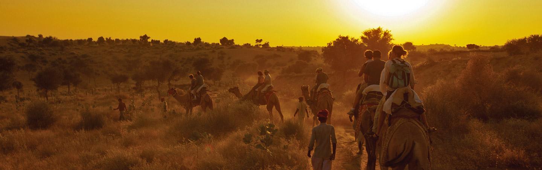 Camel rides on Backroads India Multisport Tour