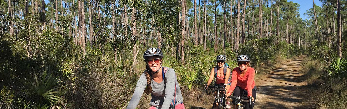Everglades Bike Tour Adventure