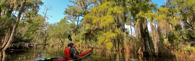 Kayaking - Backroads Charleston to Savannah Multisport Adventure Tour