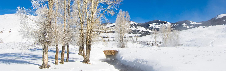 Backroads Yellowstone Winter Snow Adventure Tour