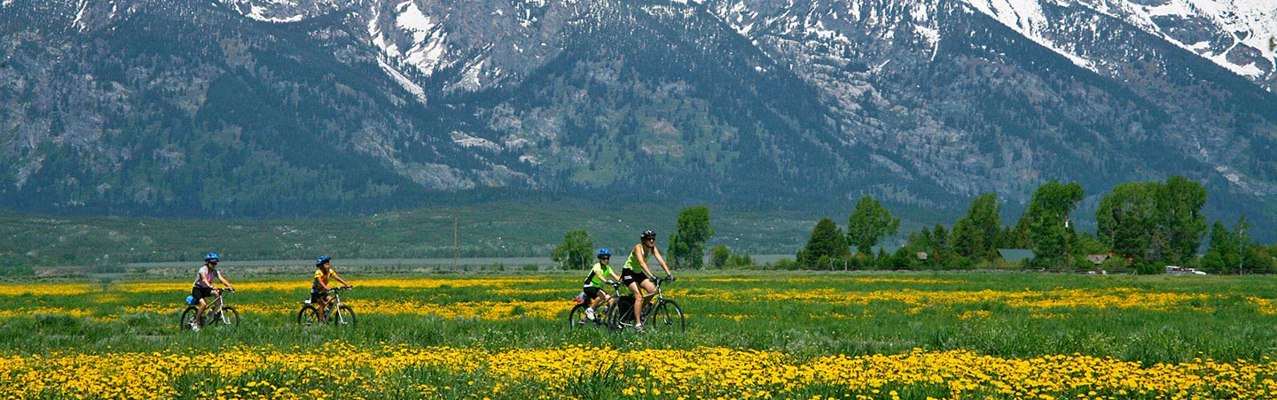 Grand Teton family bike tours