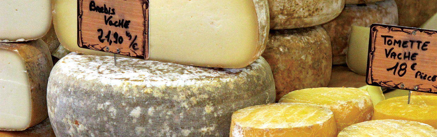 Cheese in French Pyrenees