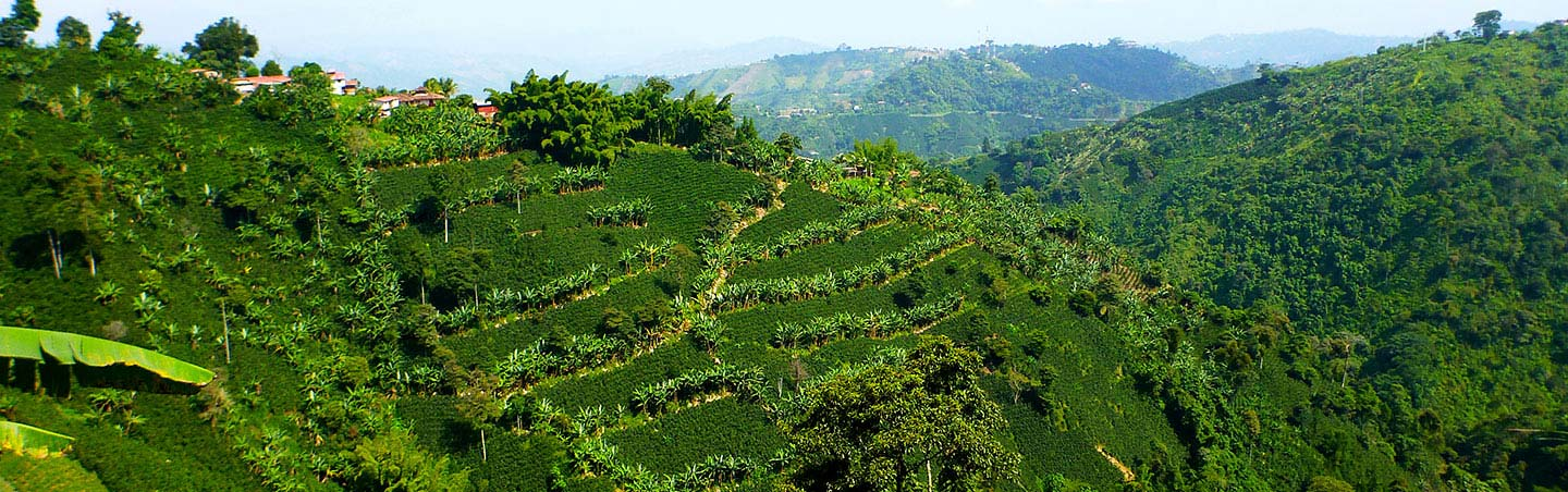 Colombia walking and hiking tour