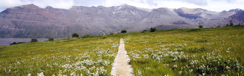 Iceland Walking & Hiking Tours