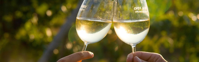Wine Tasting on Backroads Tuscany & Umbria Walking & Hiking Tour
