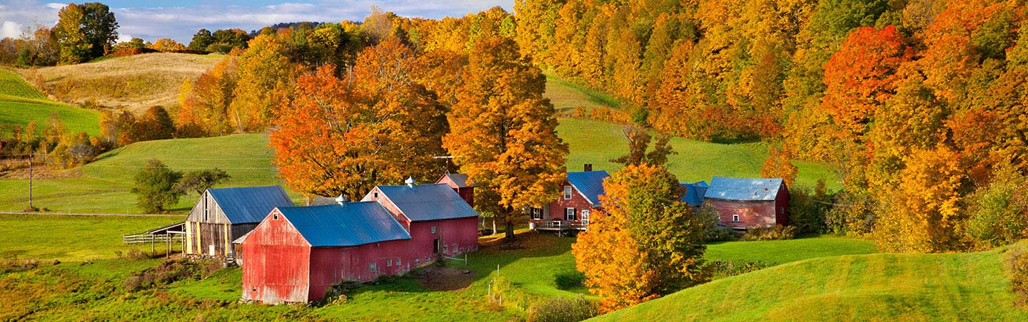 Fall Color, Vermont