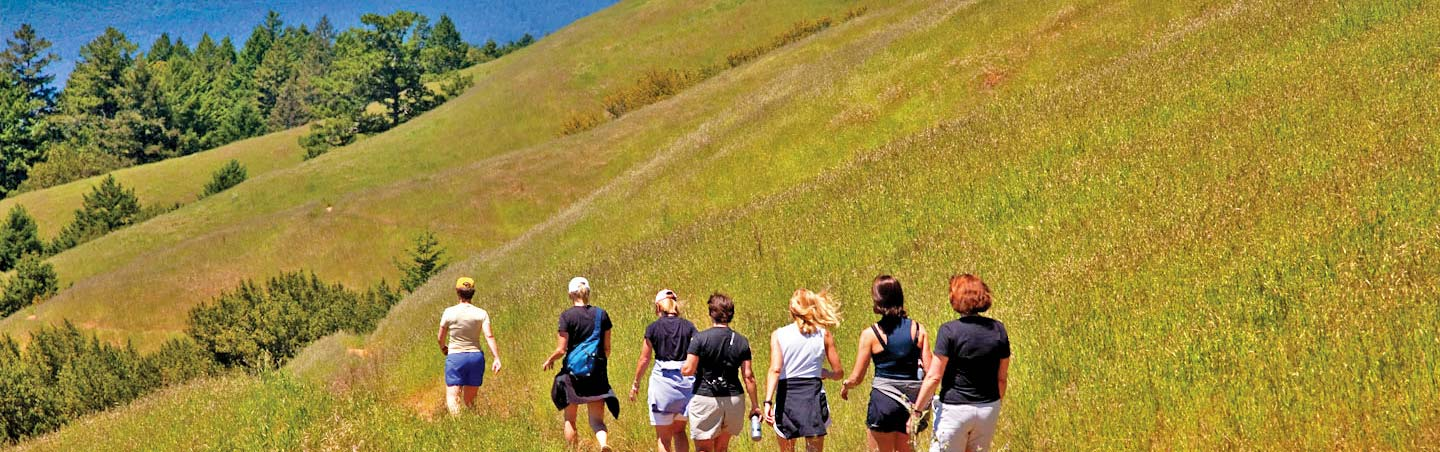 Backroads Wine Country Active Culinary Walking Tours