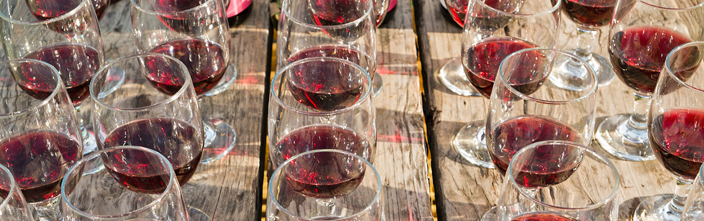 Churchill Cellars Wine, Backroads Wine Country Active Culinary Walking Tours