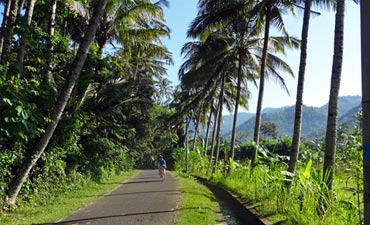Bali Family Bike Tours - Older Teens & 20s