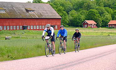 Sweden and Denmark biking thumb