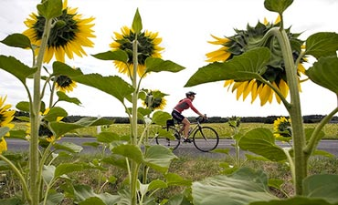 Loire Valley biking vacations