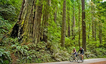 Redwood Empire Multisport Trip